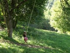 écologieet vie spirituelle,françois d'assise,laudato si et noel