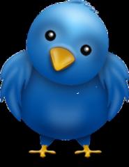 twitter-oiseau.png
